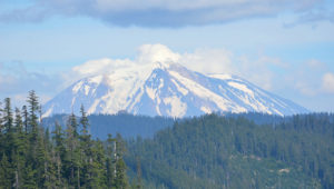 Mt St. Helens- Custom Home Builder Kelso WA